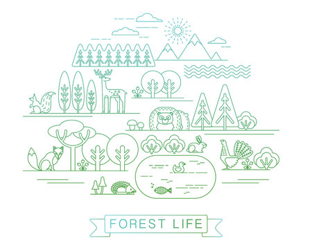Vector illustration of forest life. Forest flora and fauna. Trendy graphic style. Zdjęcie Seryjne - 48016100