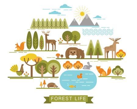 animales del bosque: Ilustración vectorial de la vida en el bosque. La flora y fauna del bosque. Estilo gráfico moda. Vectores
