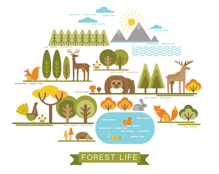 forest jungle: Vector illustration of forest life. Forest flora and fauna. Trendy graphic style.