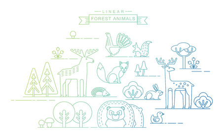 animales del bosque: Vector illustrations of forest animals. Trendy linear design elements. Vectores