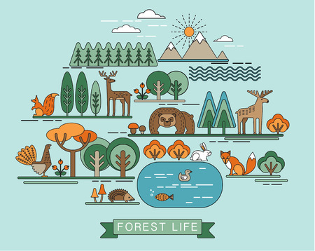 fauna: Vector illustration of forest life. Forest flora and fauna. Trendy graphic style.