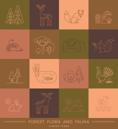 fauna: Vector linear icons of forest flora and fauna. Trendy design elements.