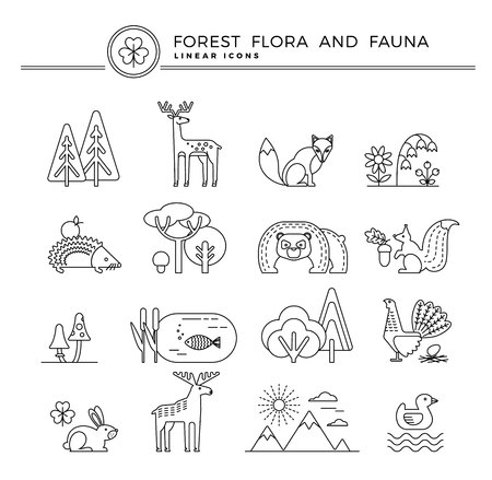 flora fauna: Vector linear icons of forest flora and fauna. Trendy design elements.