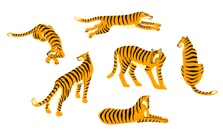 Vestor set of tigers. Trendy illustration. Design elements