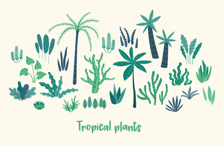 Set of abstract tropical plants. Vector design elements. 版權商用圖片 - 127594334
