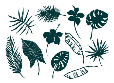 Vector set of tropical leaves and flowers.