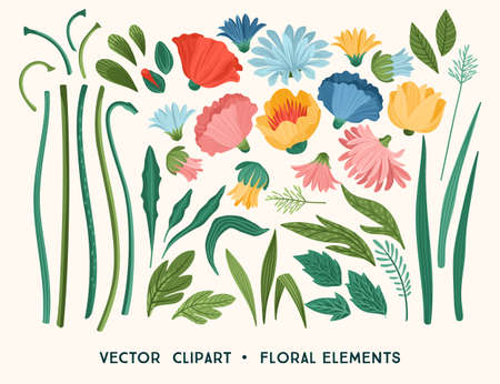 Vector clipart. Floral design elements. Leaves, flowers, grass, branches, Zdjęcie Seryjne - 164215057