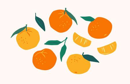 Set of drawn tangerines. Citrus fruits, oranges, mantarines. Vector illustration. Isolated elements.  イラスト・ベクター素材