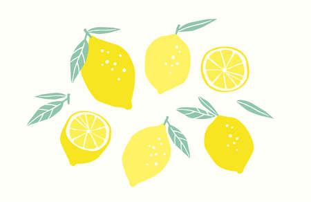 Set of drawn lemons. Citrus fruits, lemons, limes. Vector illustration. Isolated elements