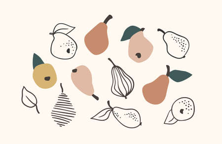 Set of drawn pears, Vector illustration. Isolated elements.  イラスト・ベクター素材