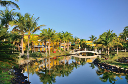 bungalows: Bungalows  with palm trees, river and a bridge