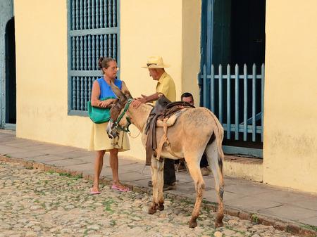Trinidad, Cuba -Genre sketch with a donkey.