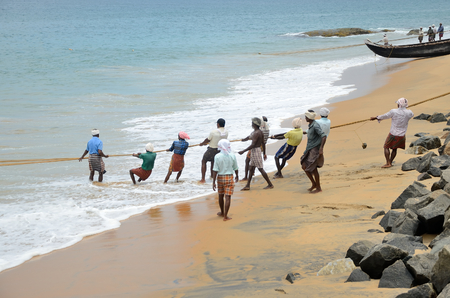 kovalam: Traditional fishermen are pulling the seine fishing net from the sea in the beach of Kovalam.