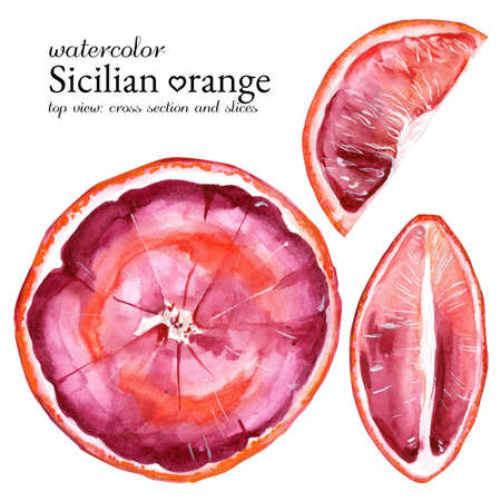 Top view cut sicilian orange and slices