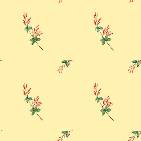 Pattern with small branches of watercolour barberry Archivio Fotografico