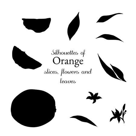 Silhouettes of orange slices without the peel, leaves and flowers Vettoriali