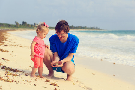 seaweeds: father and little daughter looking at seaweeds on summer beach