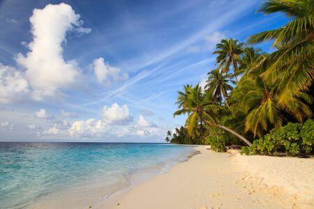 sand: tropical sand beach against blue sky, vacation concept