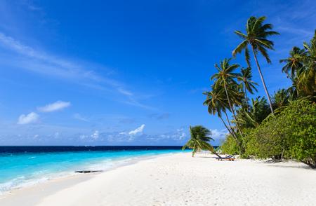 playas tropicales: tropical sand beach in Maldives, luxury vacation Foto de archivo