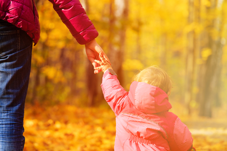 woman hand: mother and little daughter holding hands in autumn park