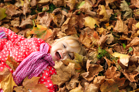 fall of the leaves: cute little girl playing with autumn fall leaves