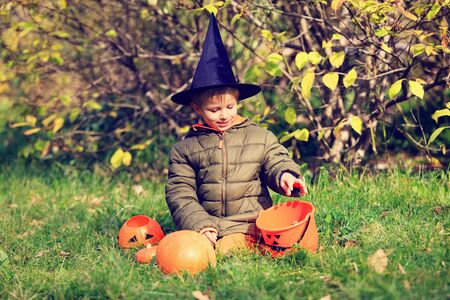 trick or treating: little boy in halloween costume in autumn park, kids trick or treating Stock Photo