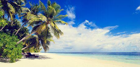 playas tropicales: arena de playa tropical contra el cielo azul, panorama