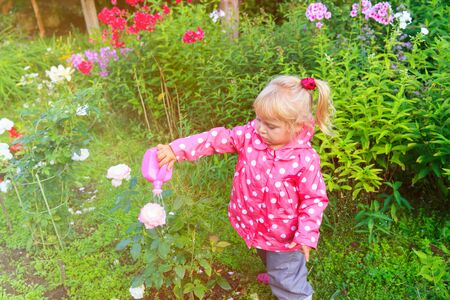 little girl watering plants in the garden, kids working in garden