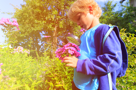 little boy exploring flowers in the garden with magnifying glass, kids learning Stock Photo