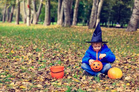 treating: little boy in halloween costume in autumn, kids trick or treating