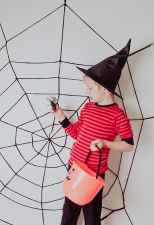 trick or treating: little boy with spider and web at halloween party, kids trick or treating