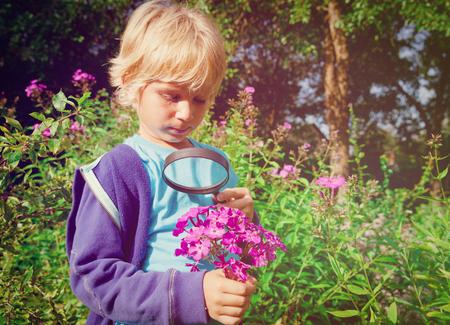 kids learning nature - little boy exploring flowers in garden Imagens