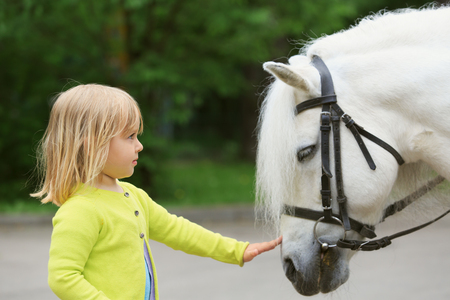 little girl and big horse in nature