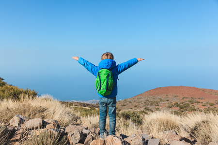 happy little boy hiking in mountains