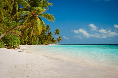 tropical sand beach