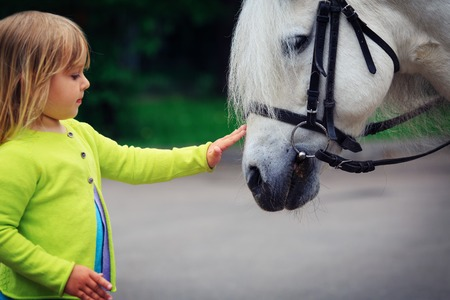 little girl touching big horse in nature Stock Photo