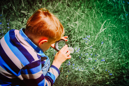 kids learning - little boy exploring flowers with magnifying glass Stok Fotoğraf - 97821229