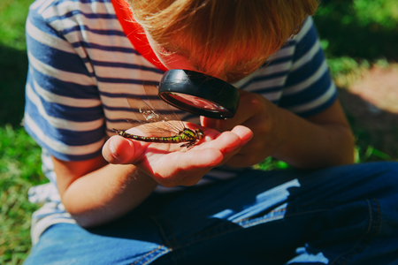 kids learning - little boy exploring dragonfly with magnifying glass Stok Fotoğraf
