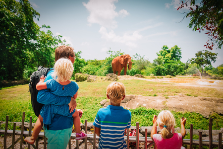 father and kids looking at elephants in zoo Stock Photo - 116347742