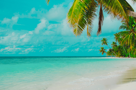 tropical sand beach with palm trees, vacation concept Imagens