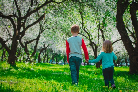 little boy and girl wak in spring nature, kids enjoy apple blossom