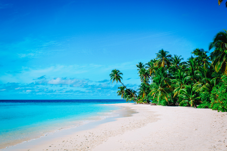 tropical sand beach with palm trees, vacation concept Banco de Imagens