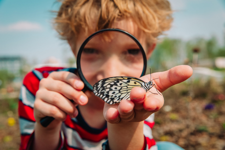 boy looking at butterfy, kids learning nature Stok Fotoğraf - 123938311