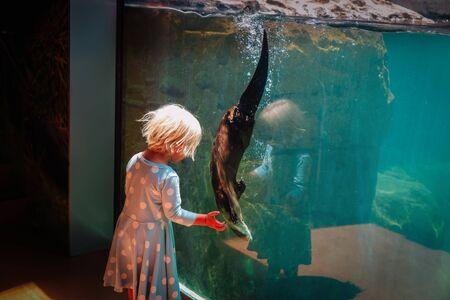 kleines Mädchen, das Otter im großen Aquarium betrachtet
