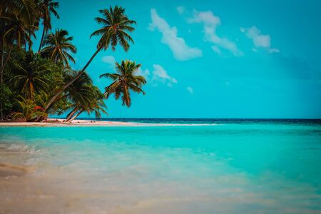 tropical sand beach with palm trees, beach vacation and travel concept Imagens