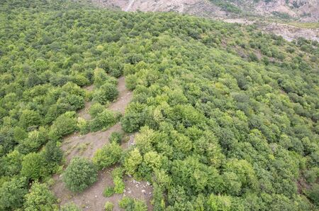 tatev: Forest landscape. The landscape in Armenia Tatev. Forest in mountains top view. Stock Photo