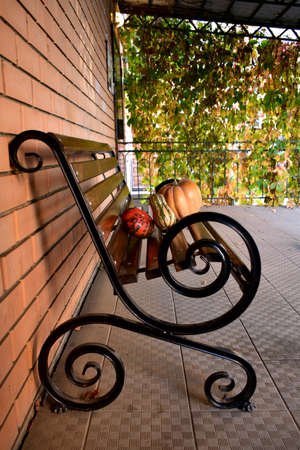 Beautiful pumpkins on a wooden bench near a brick wall in the autumn morning. 写真素材