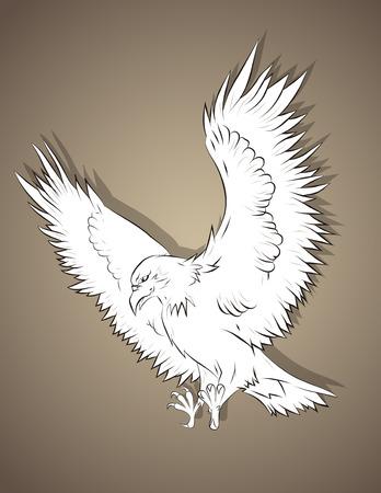 tattered: Vector illustration of hunting  eagle. Illustration