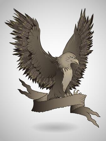 tattered: Vector illustration of a flying eagle with tattered banner. Illustration