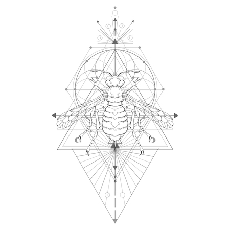 Vector Illustration With Hand Drawn Wasp And Sacred Geometric
